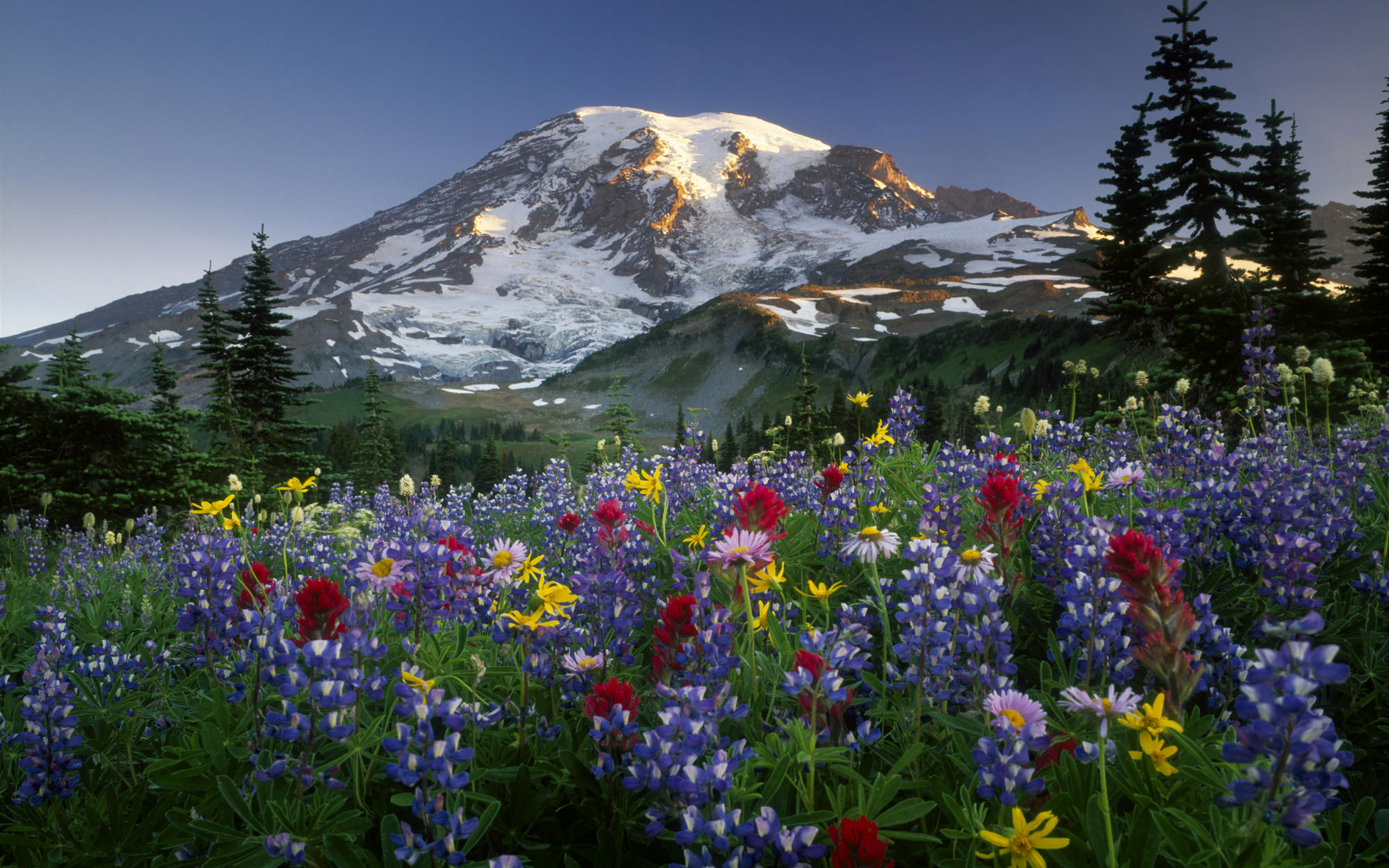 Mountains and flowers free desktop wallpapers for widescreen hd mountains wallpapers voltagebd Gallery