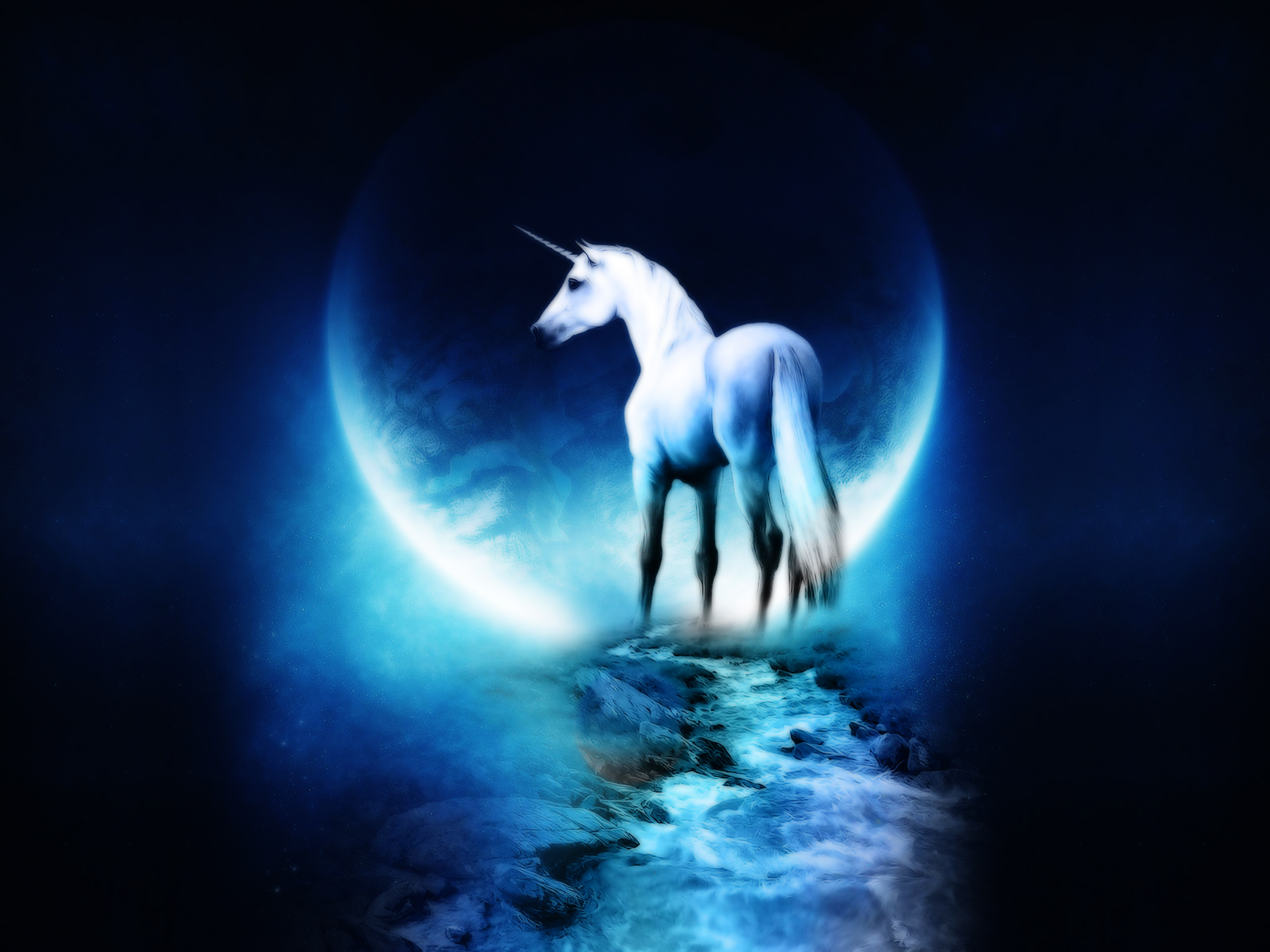 Fantasy horse free desktop wallpapers for widescreen hd and mobile fantasy horse voltagebd Images