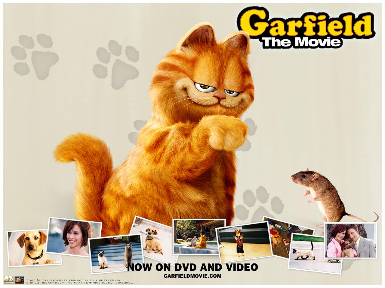 Garfield Tale of Two Kitties