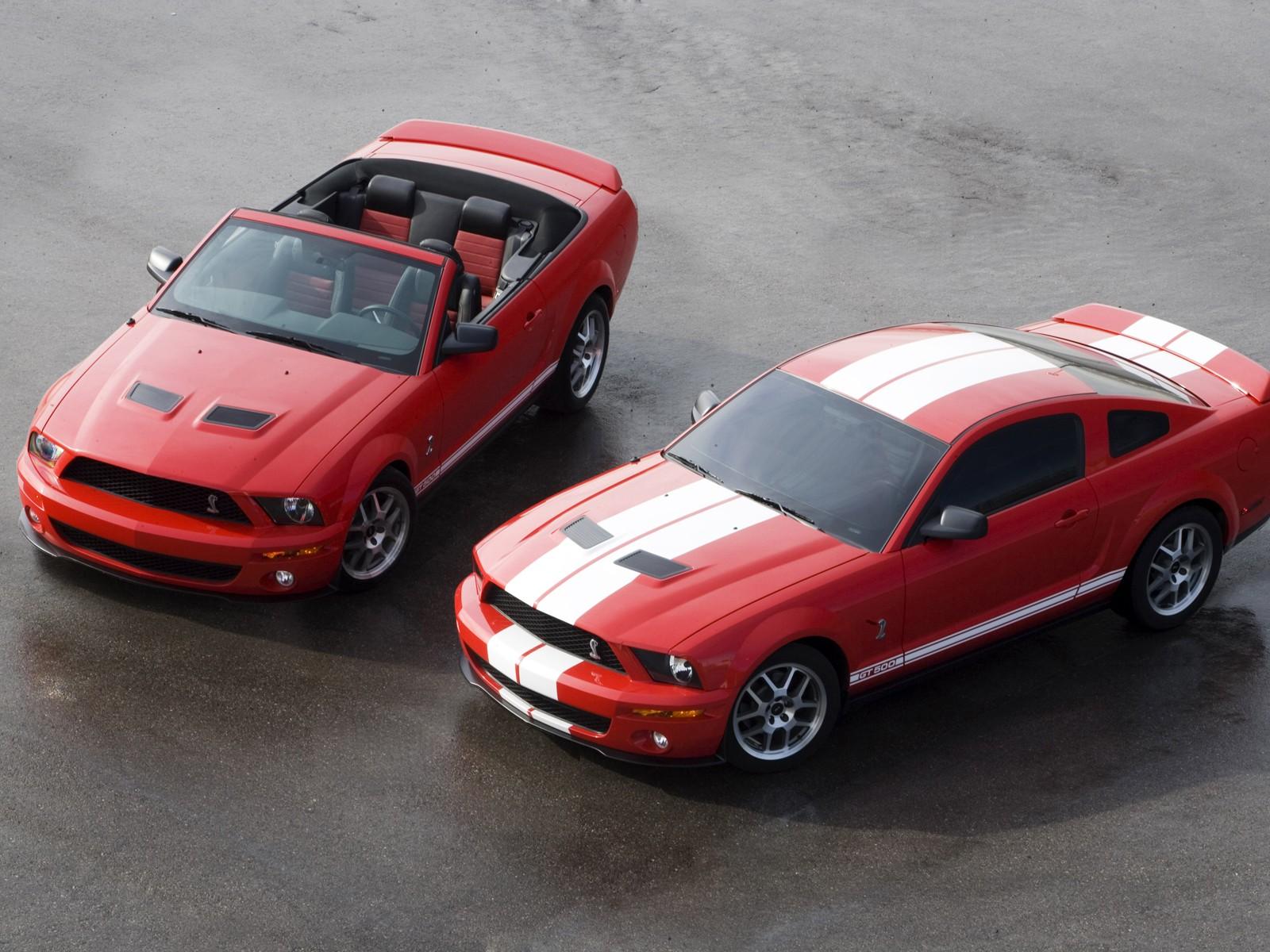 Shelby Cobra GT500 Mustang 064