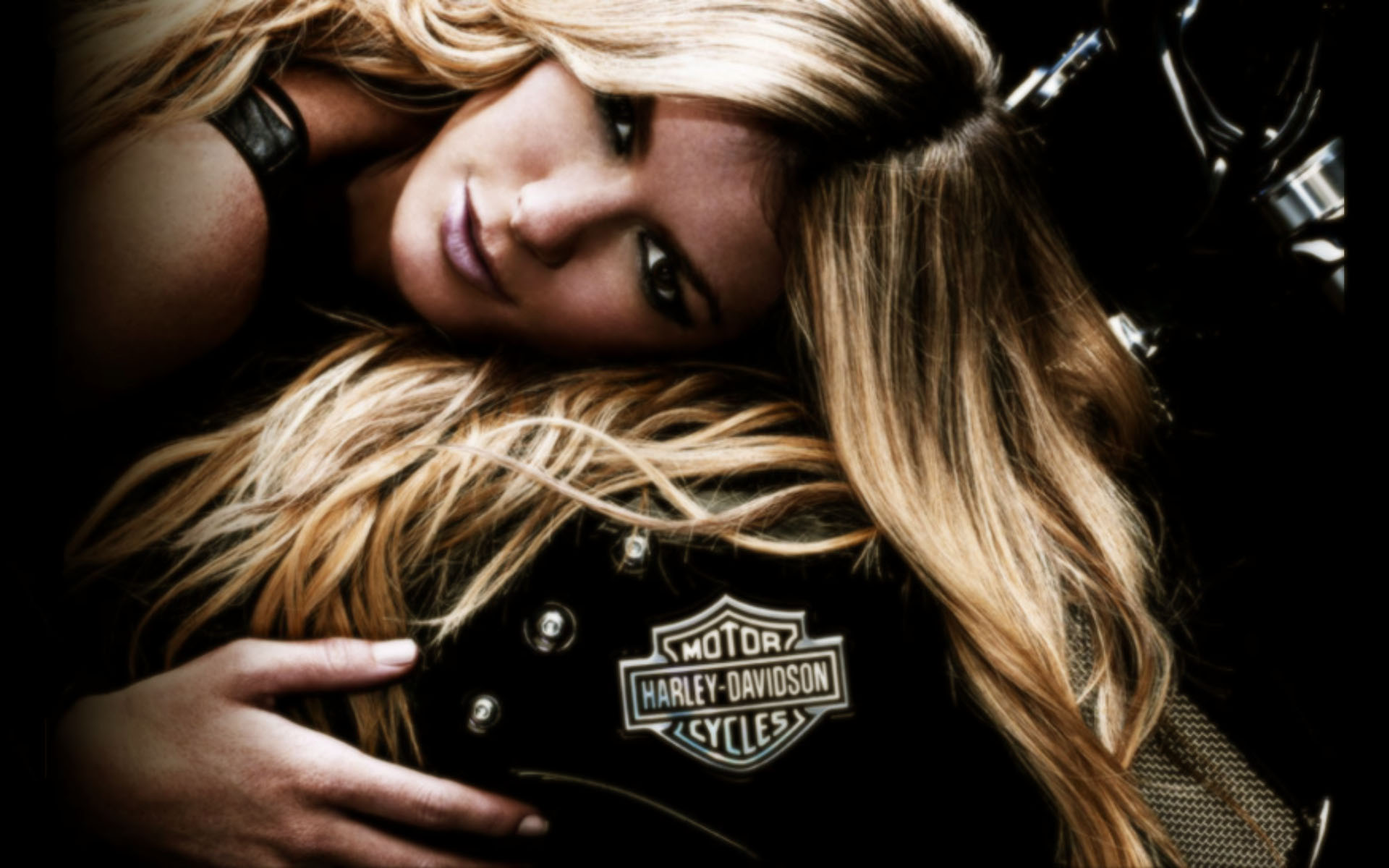 Harley harley davidson v rod sciox Image collections