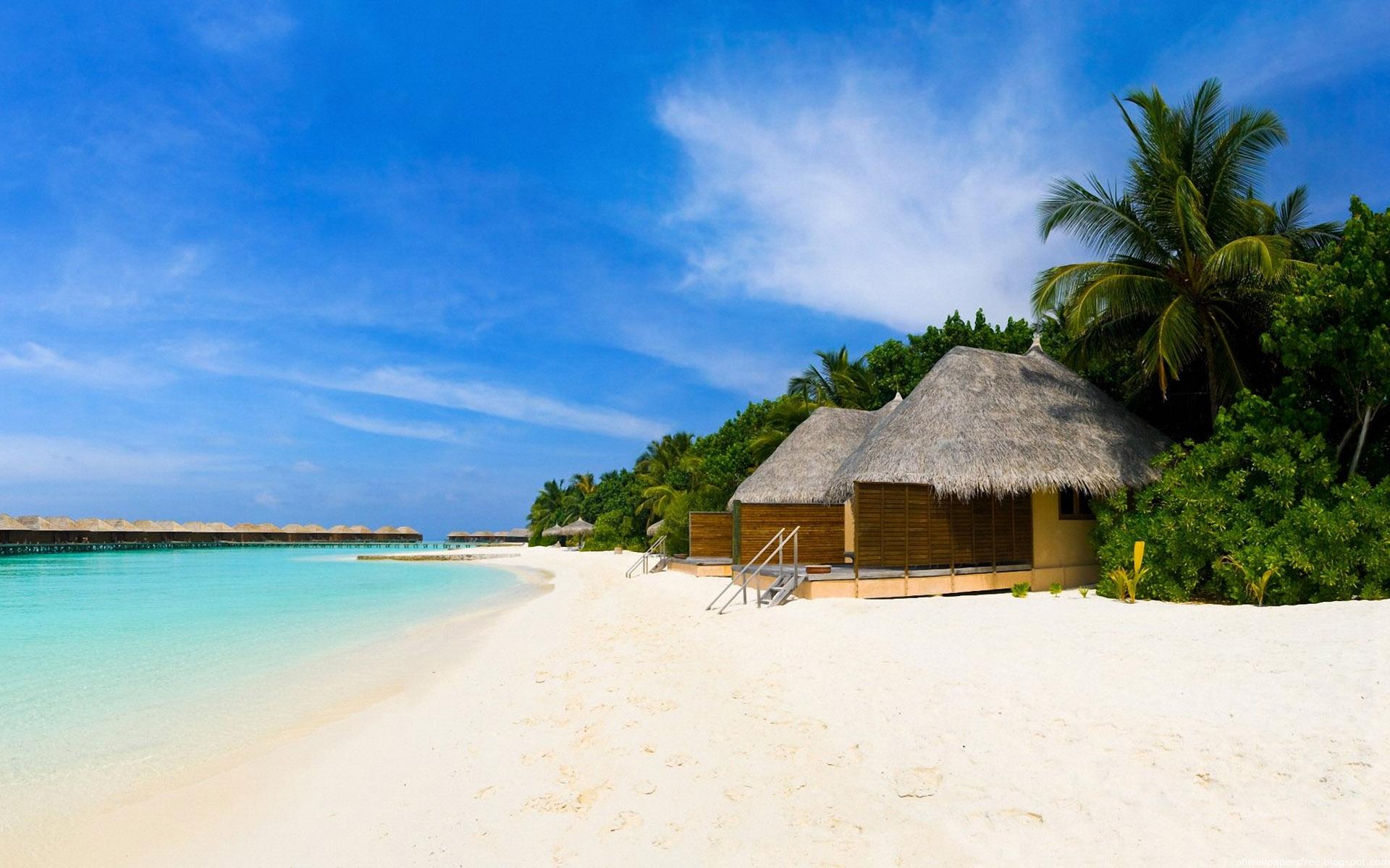 Beach Holidays Wallpaper Sand Beach
