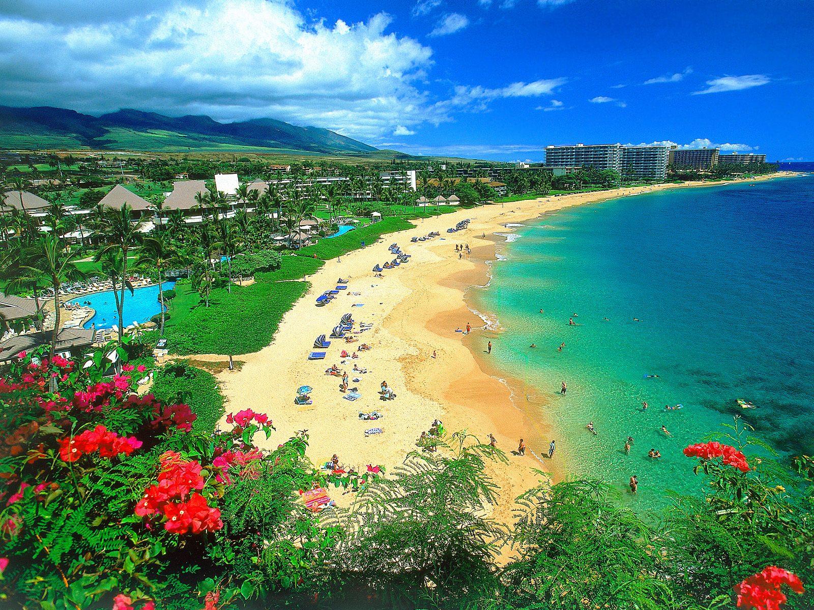beach resort disasters an economic hazard