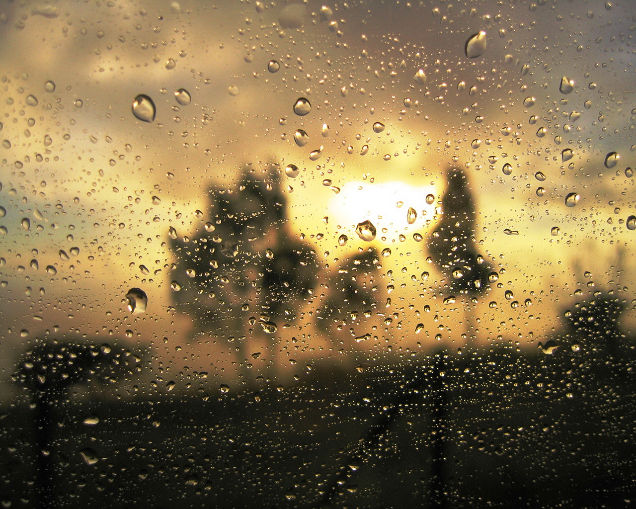 Rainy Day Free Desktop Wallpapers For Widescreen Hd And