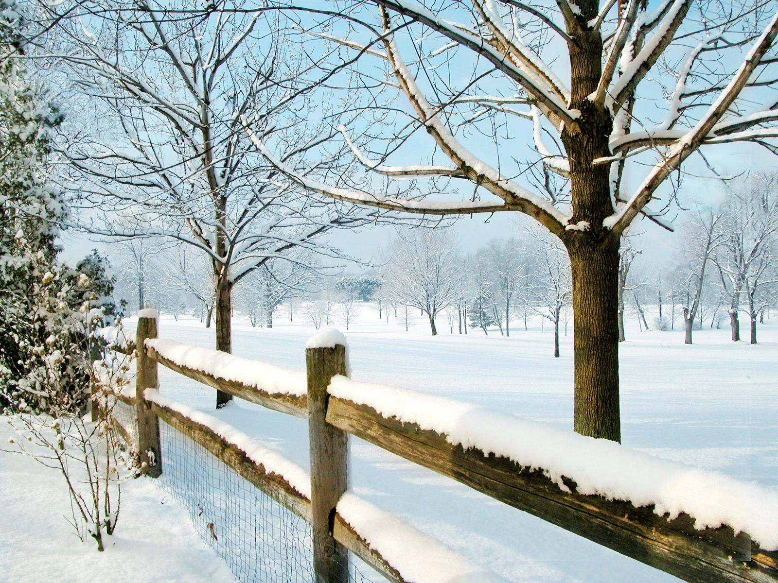 country rail fence winter - photo #3