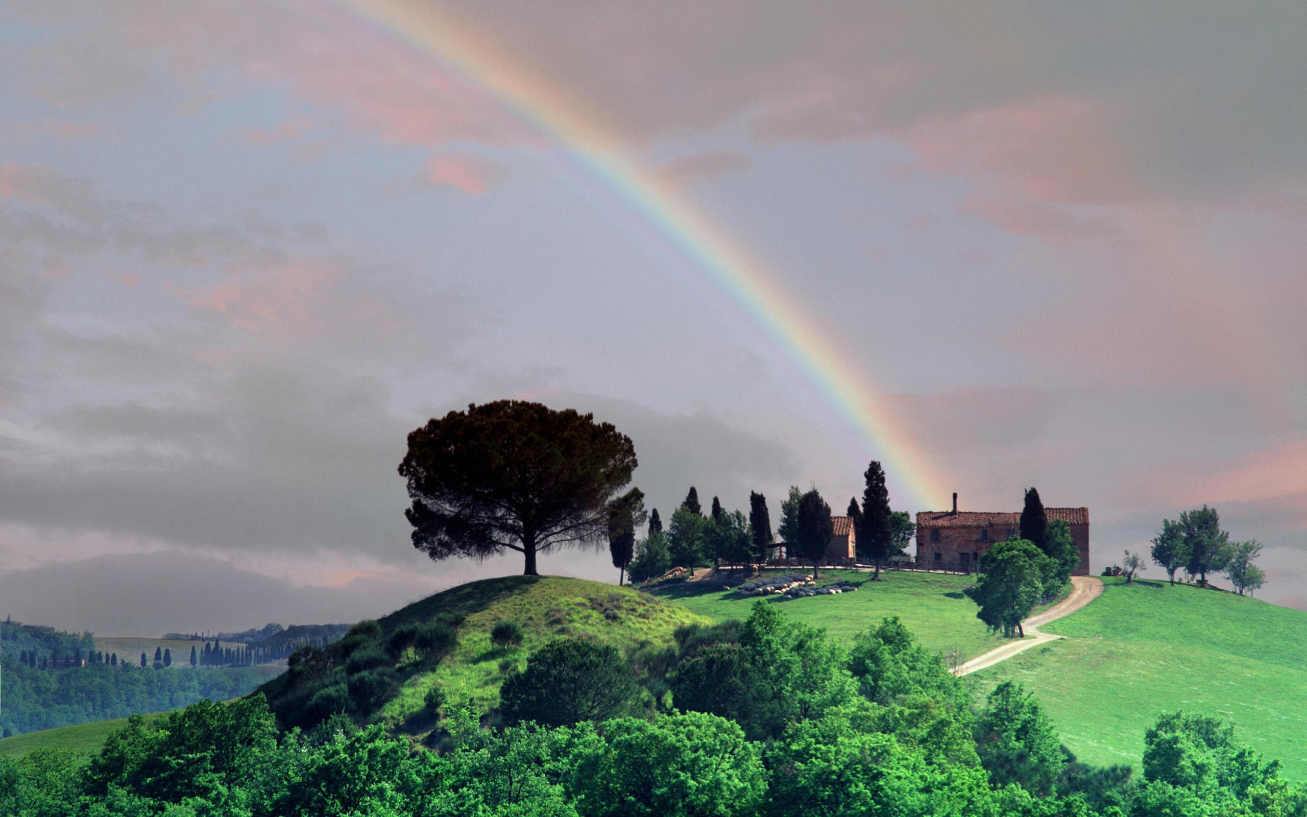 радуга над дворцом бесплатно