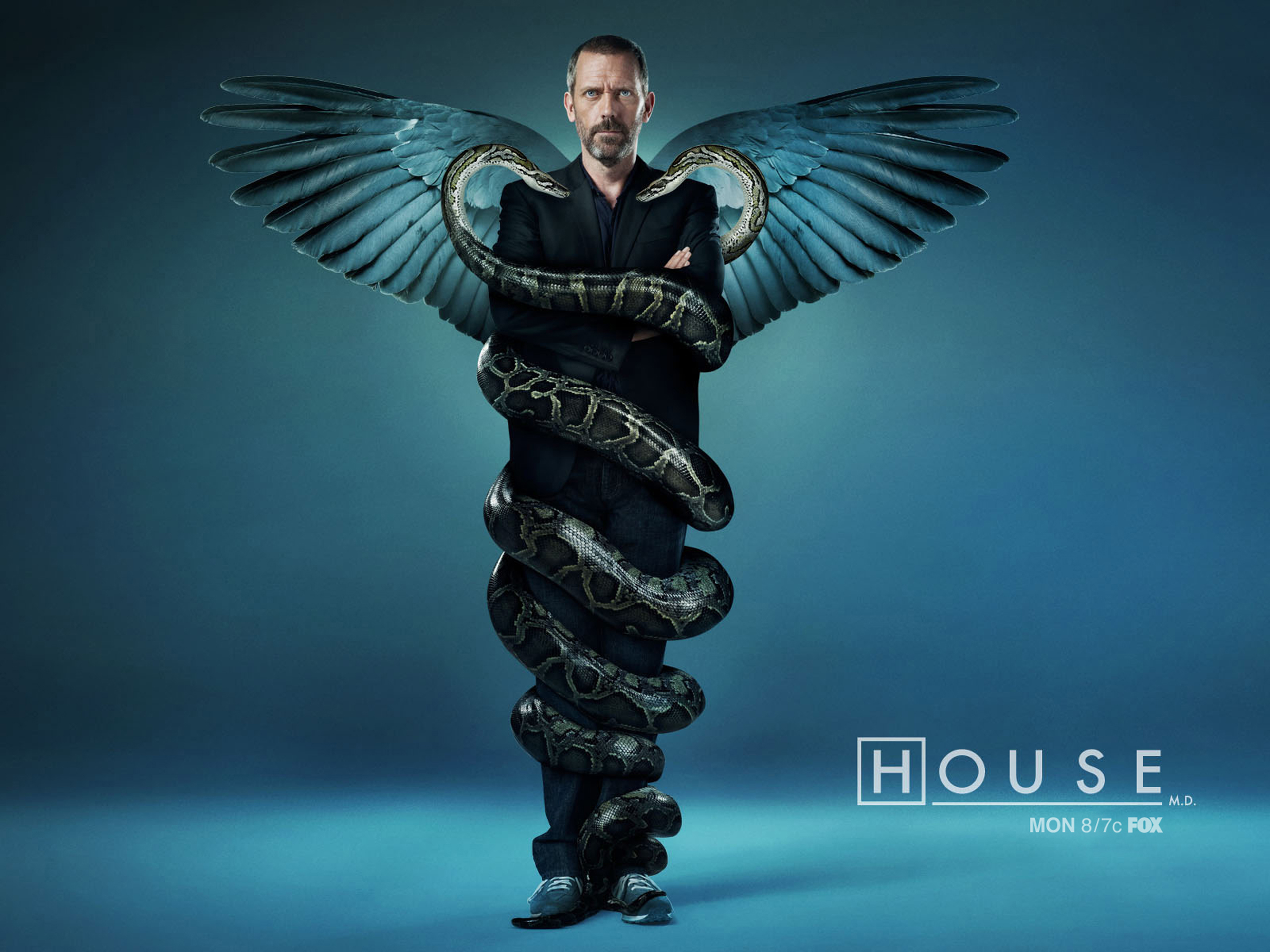 House m d - House of tv show ...