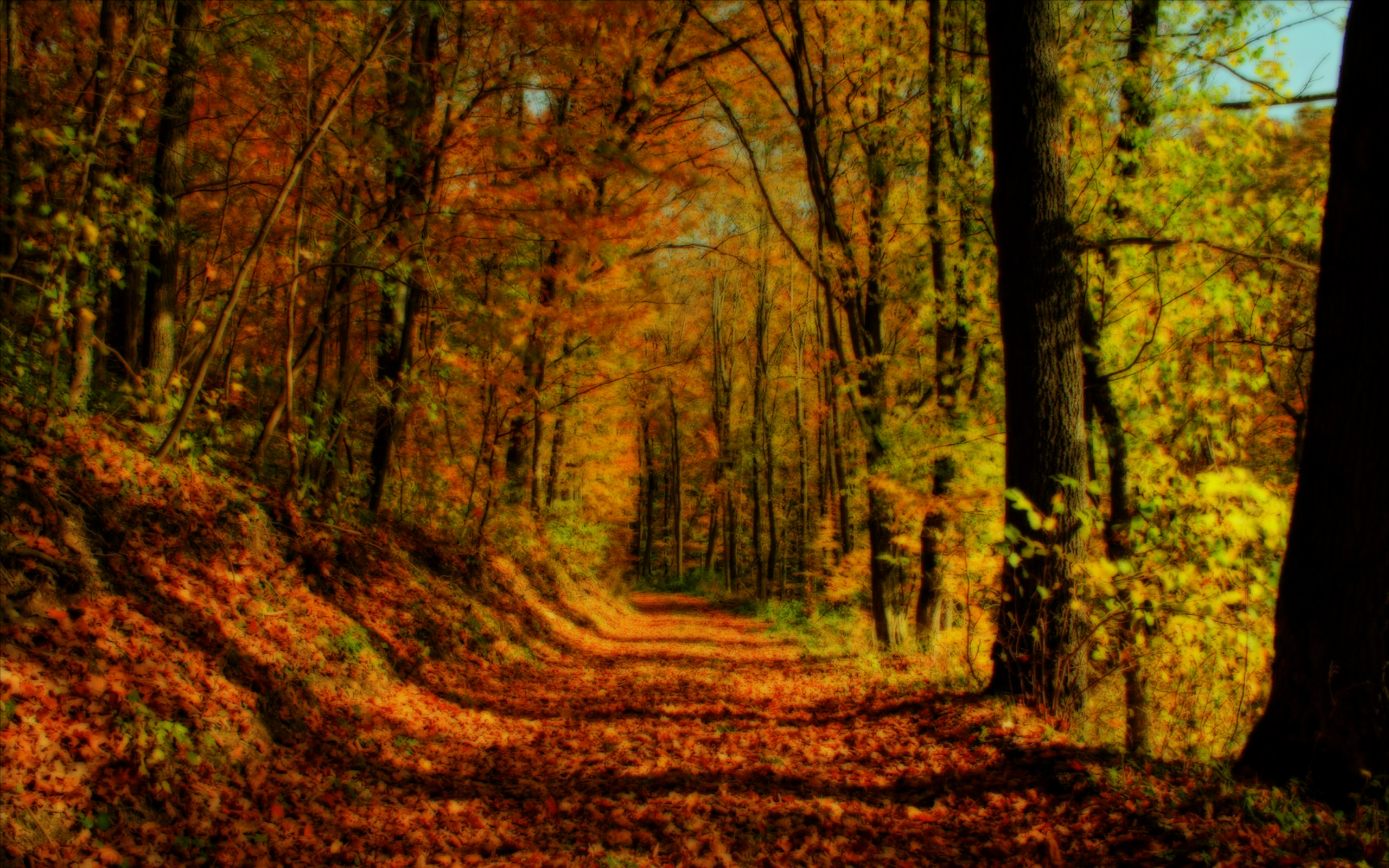 autumn free desktop wallpapers for hd widescreen and