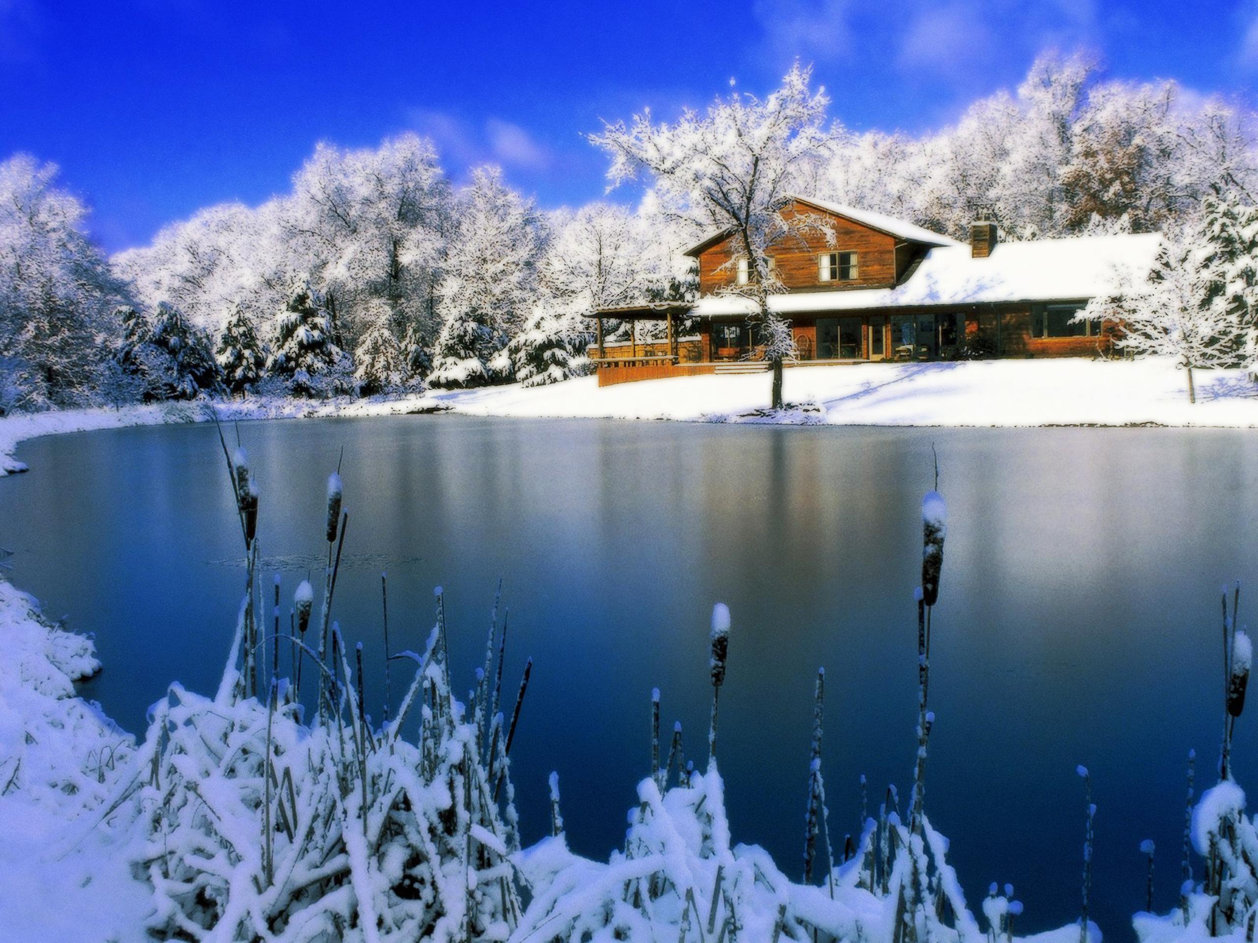 winter scenes viewing gallery