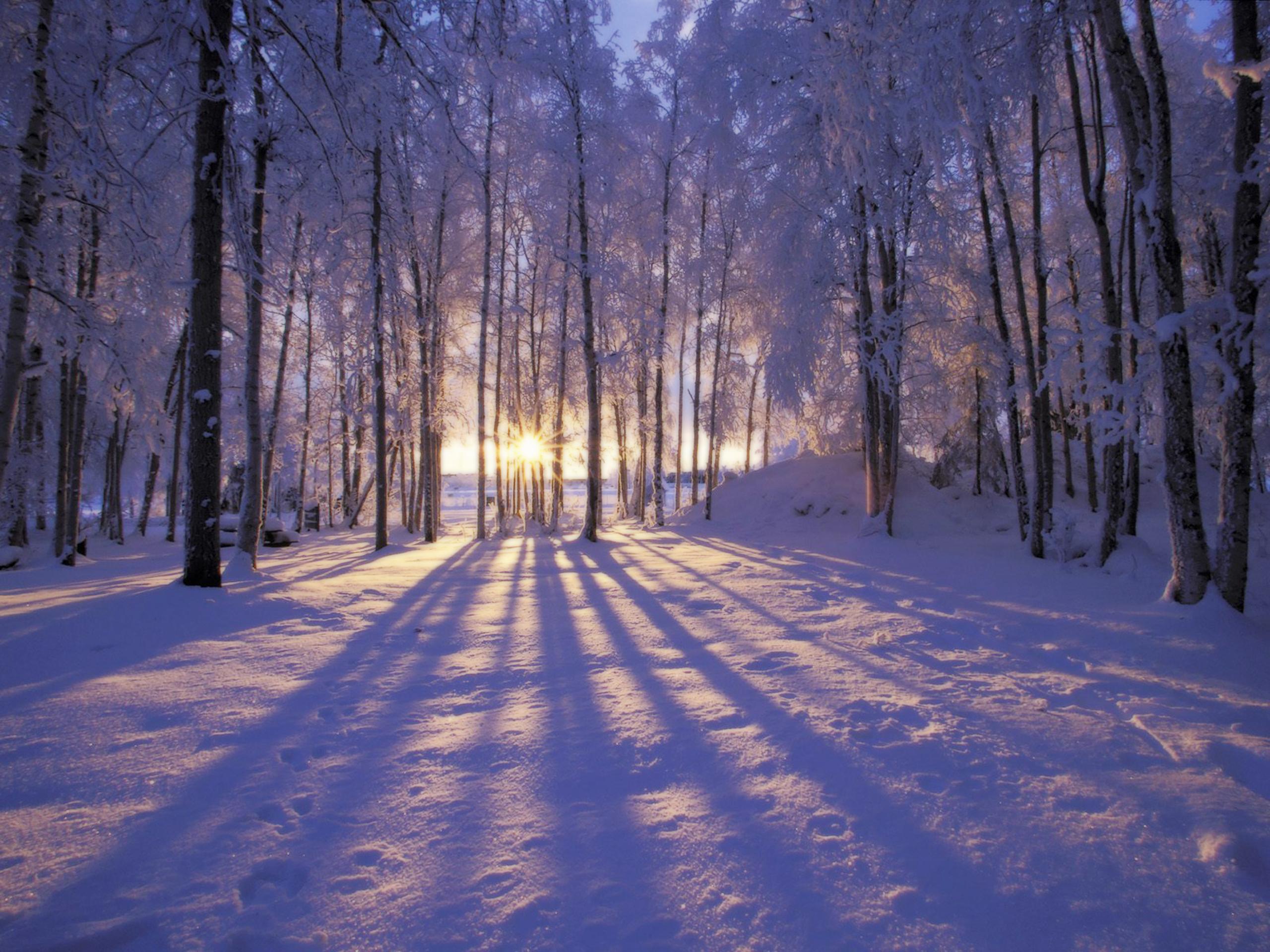 winter scenes wallpaper for desktop