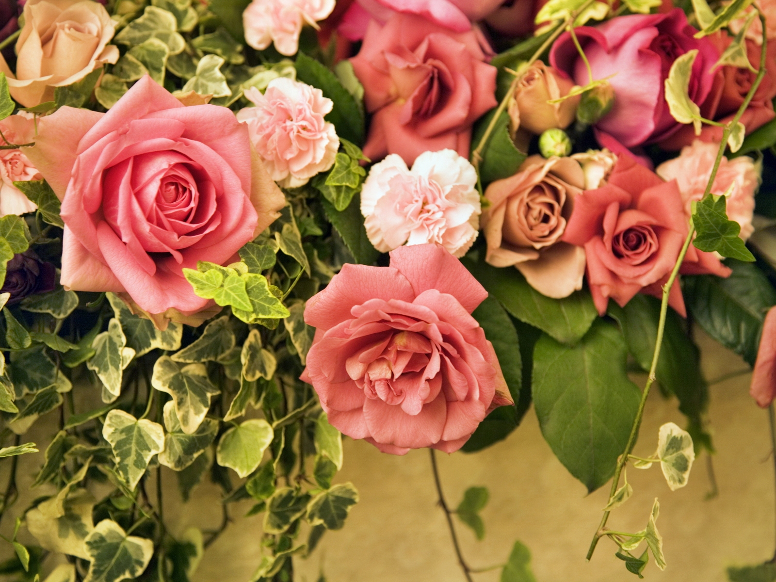 Download photos of beautiful flowers images about beautiful flowers beautiful flowers izmirmasajfo Image collections