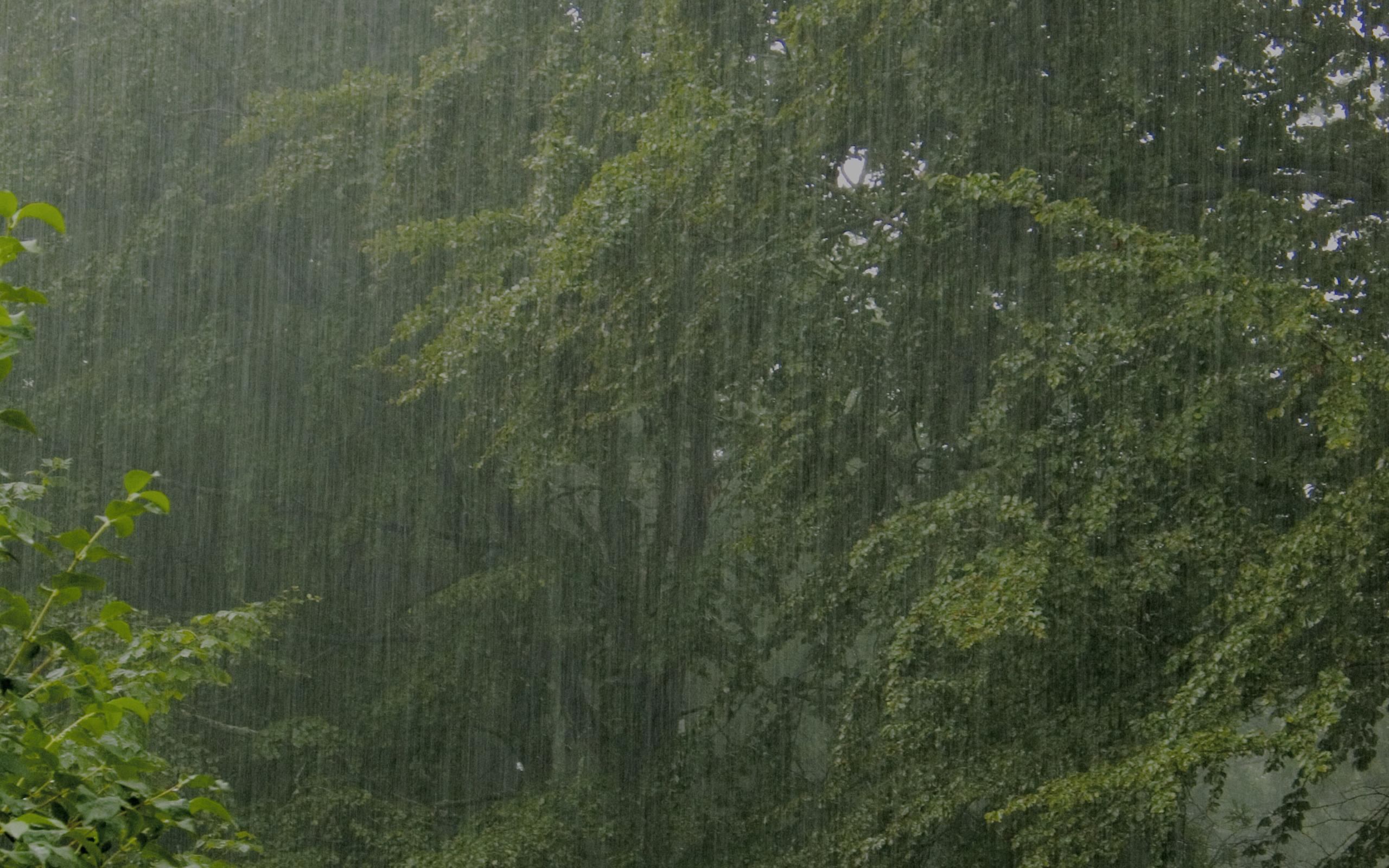 Погода в г красный кут саратовской области на 10 дней