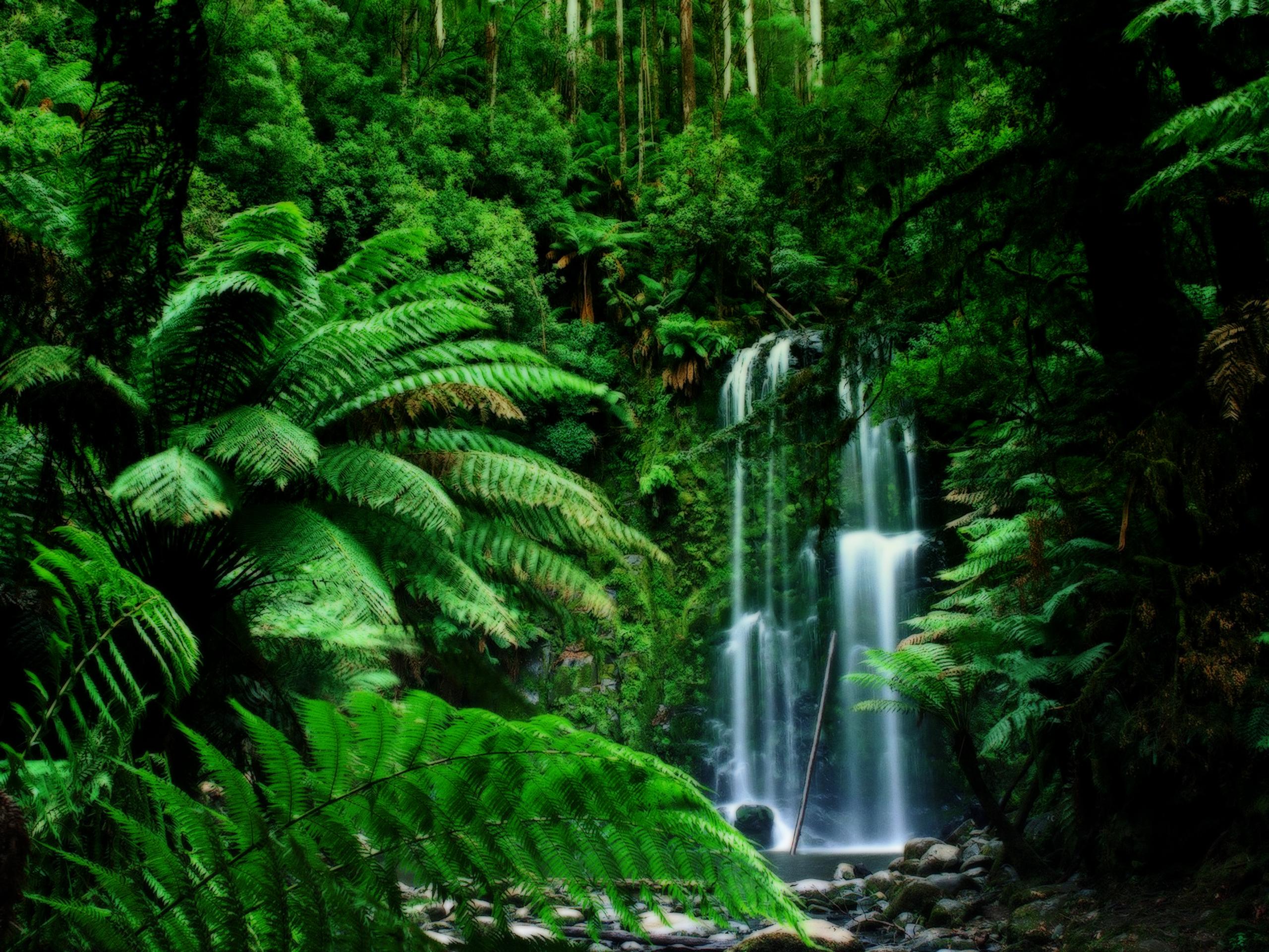 Waterfalls for Jardin 974