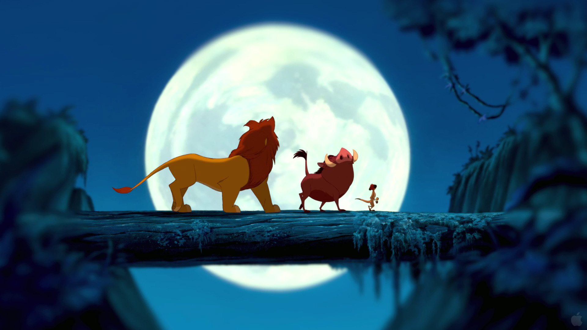 the lion king wallpapers desktop wallpapers