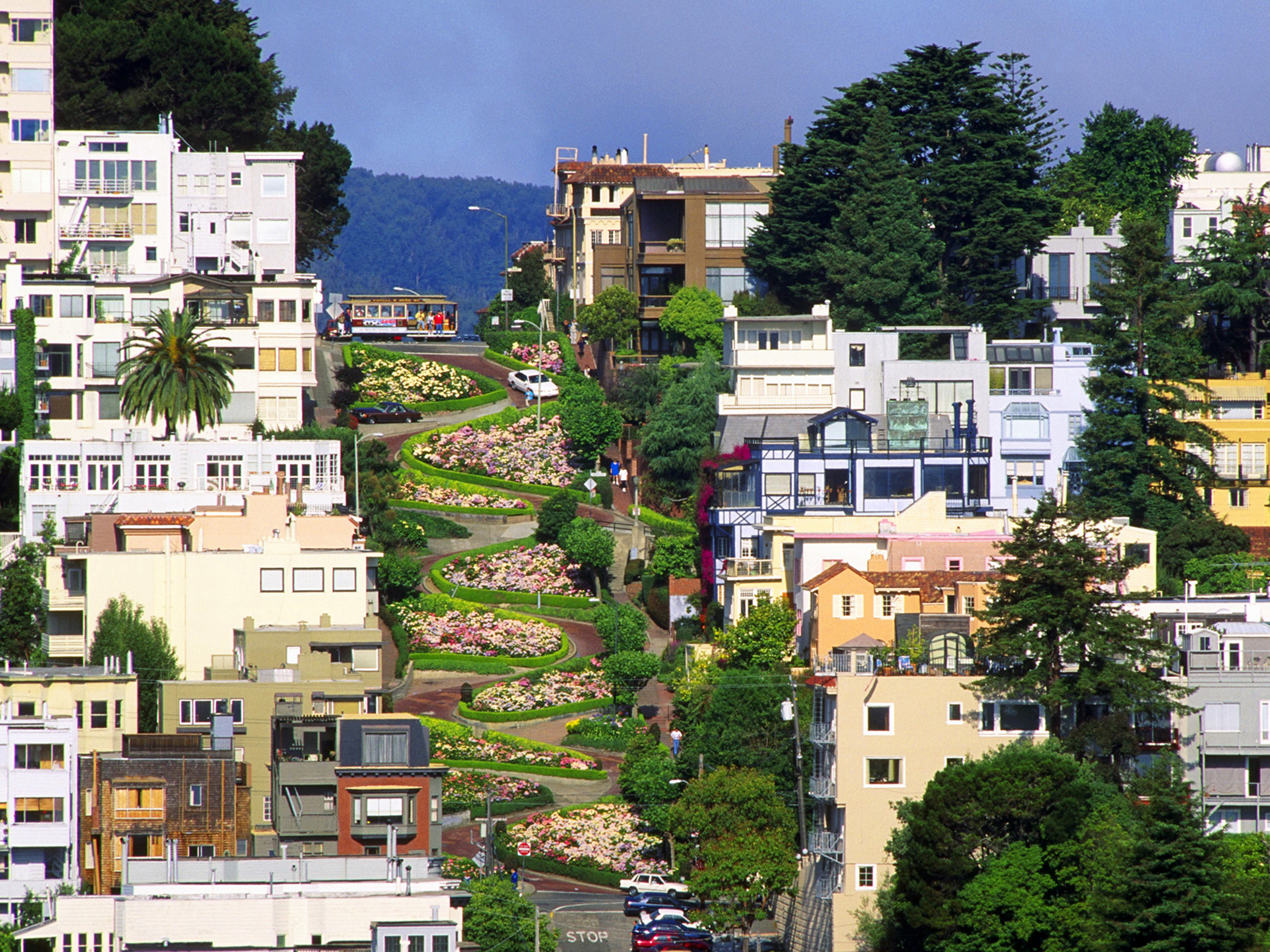 Lombard street in san francisco free desktop wallpapers for wallpaper voltagebd Choice Image