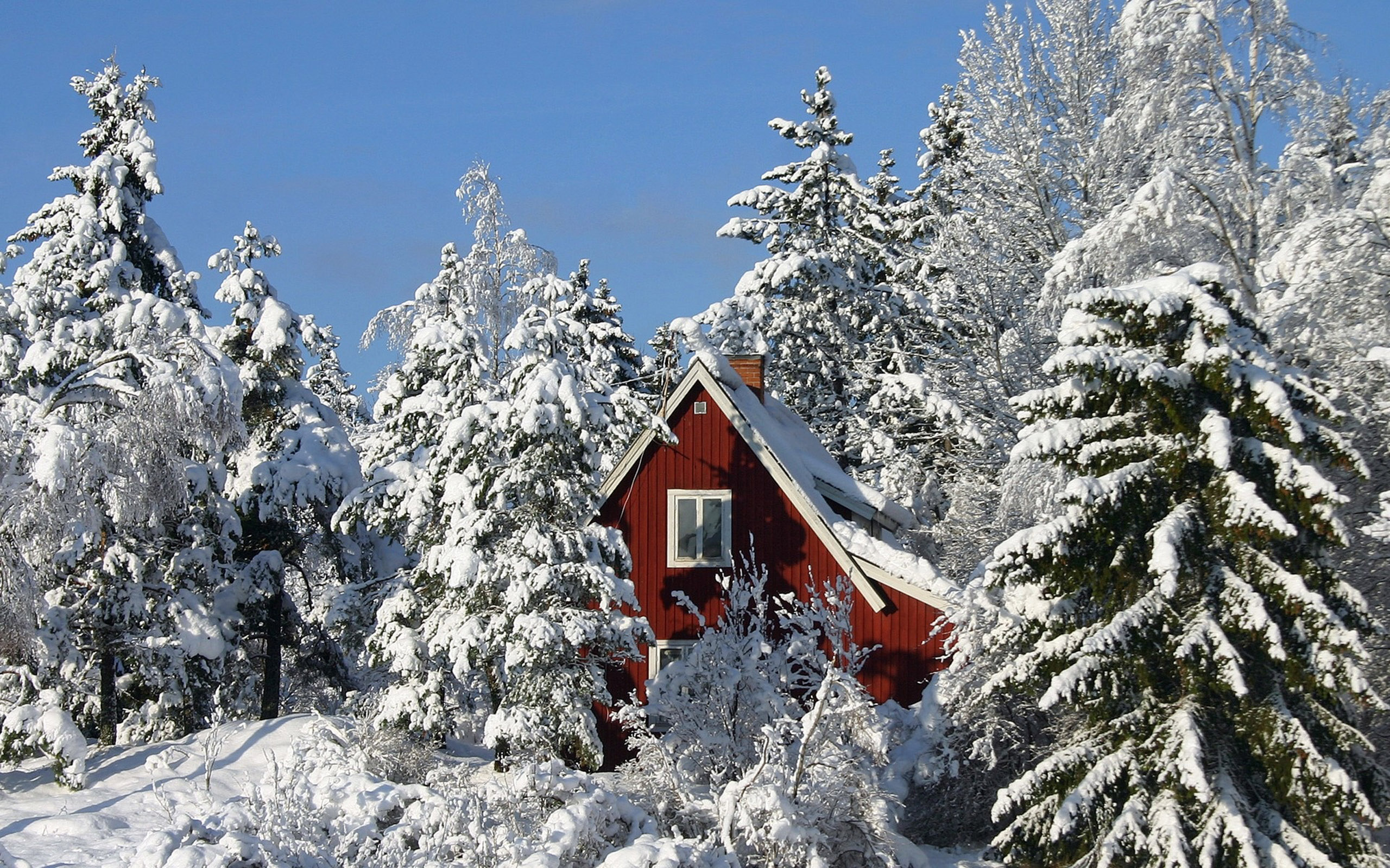 winter and snow scenes free desktop wallpapers for
