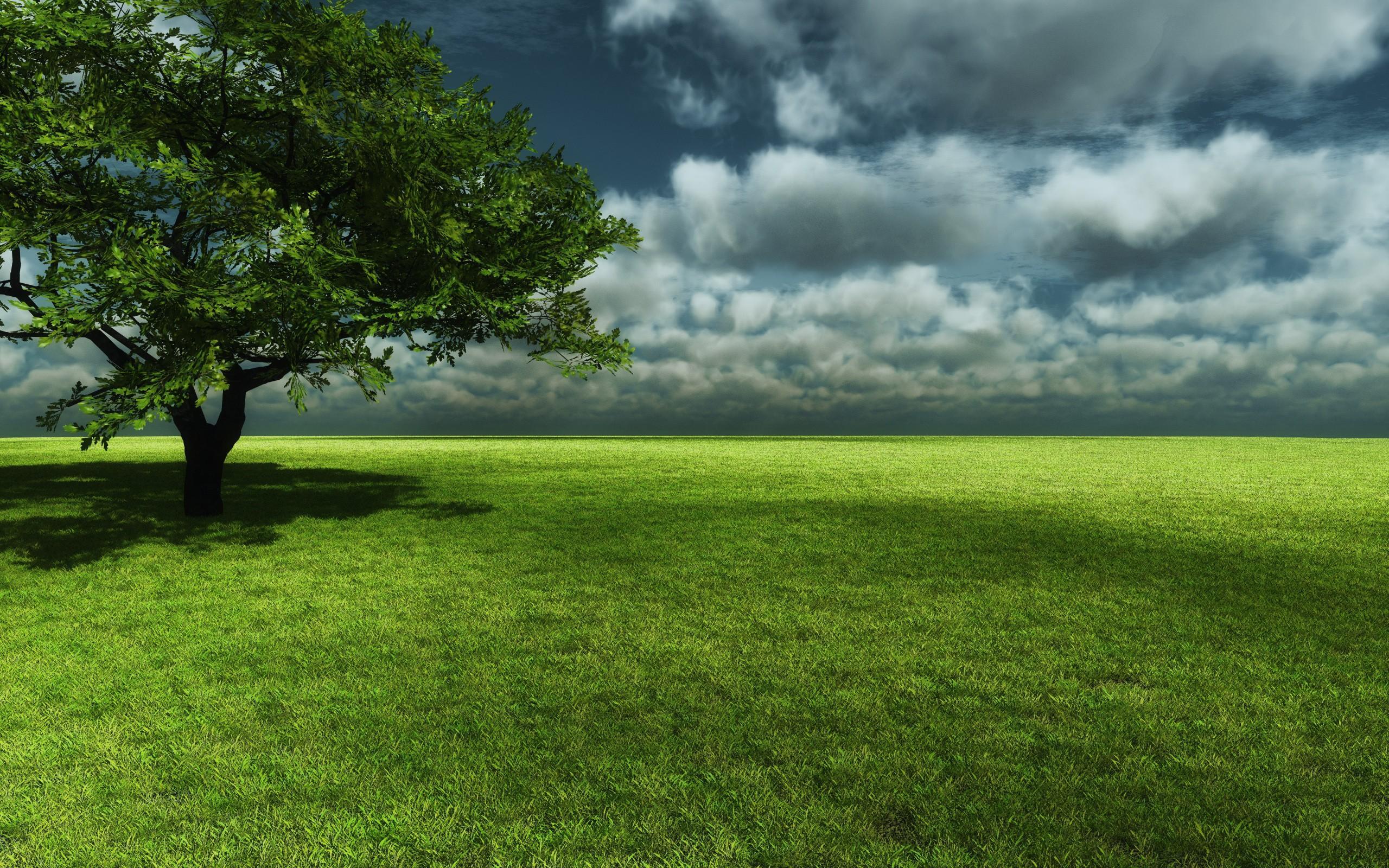 дерево поле  № 439080  скачать