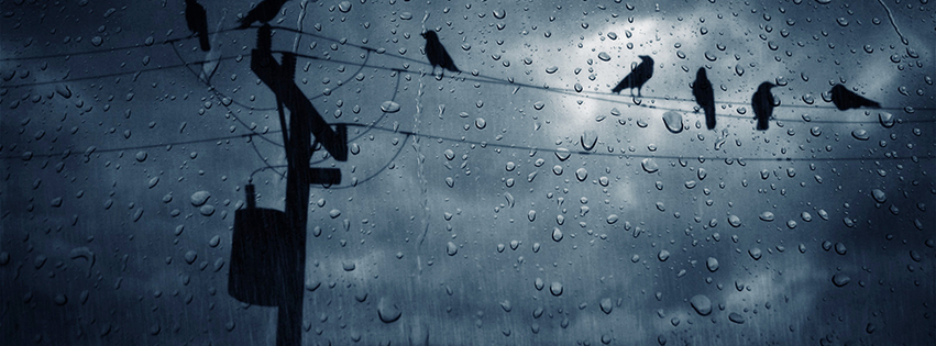 Facebook Cover Photo Rain ~ Rain nature for facebook covers free desktop wallpapers