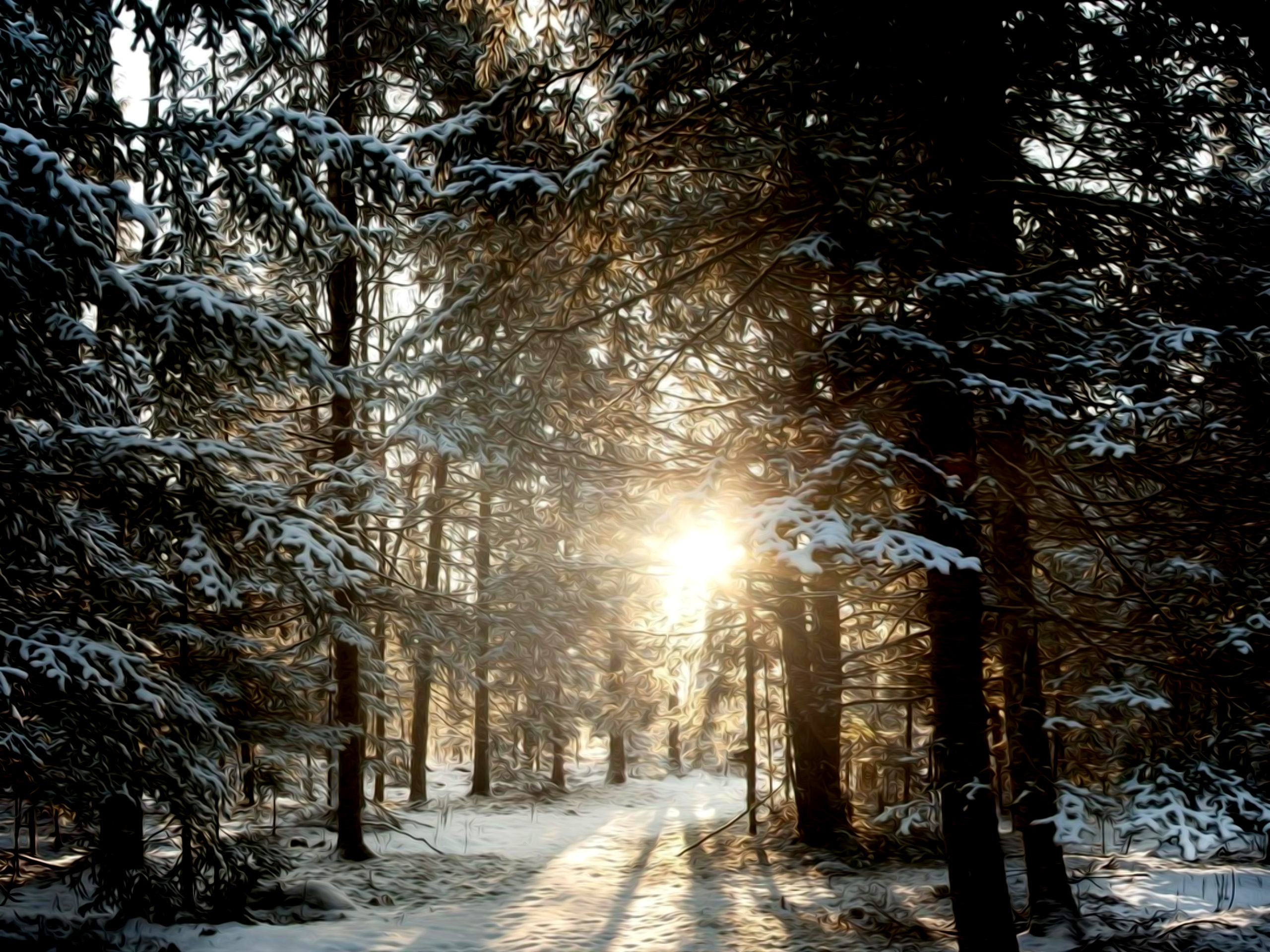 winter nature scenes pictures to pin on pinterest pinsdaddy