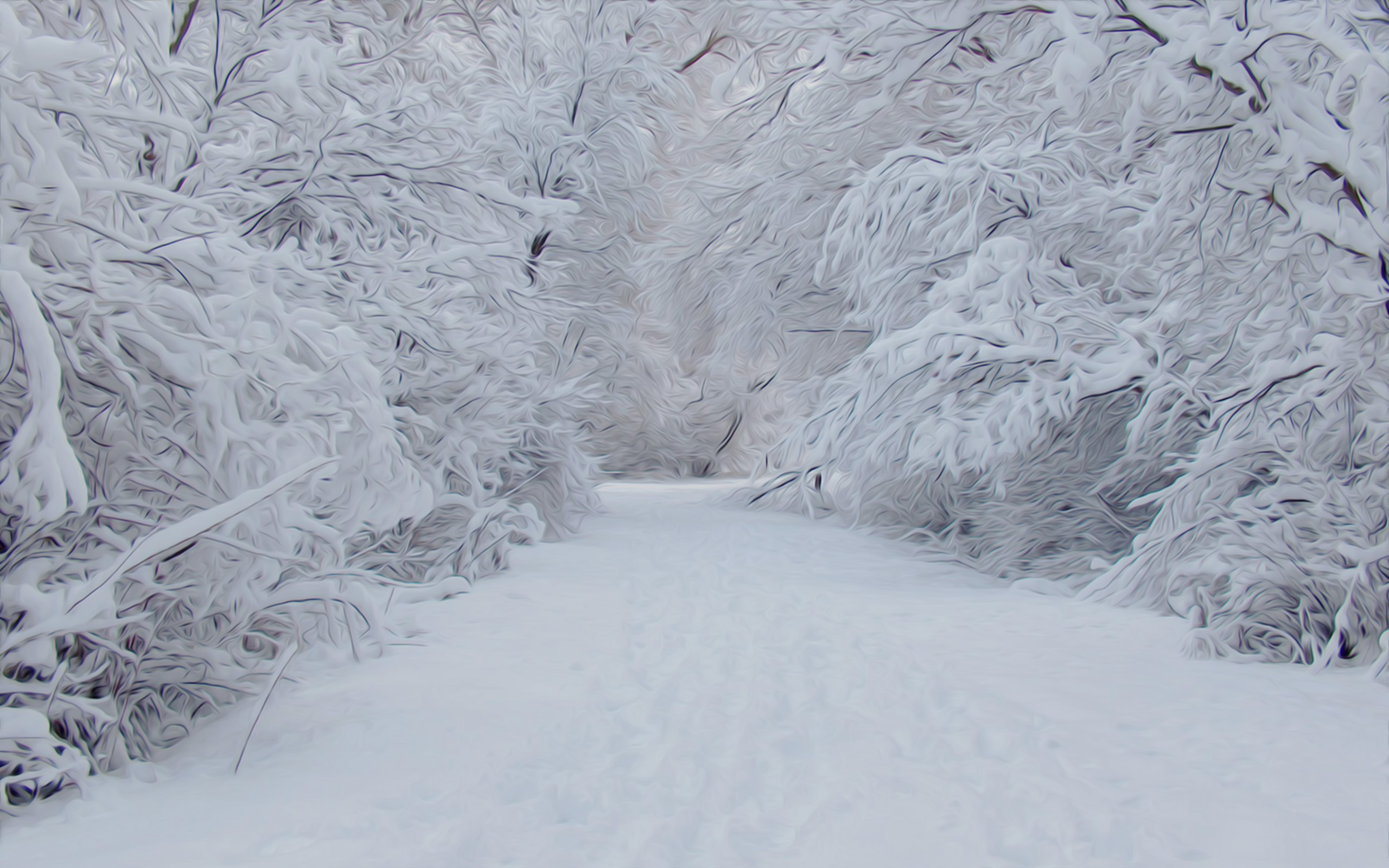 Winter Nature Snow Scene Free Desktop Wallpapers For
