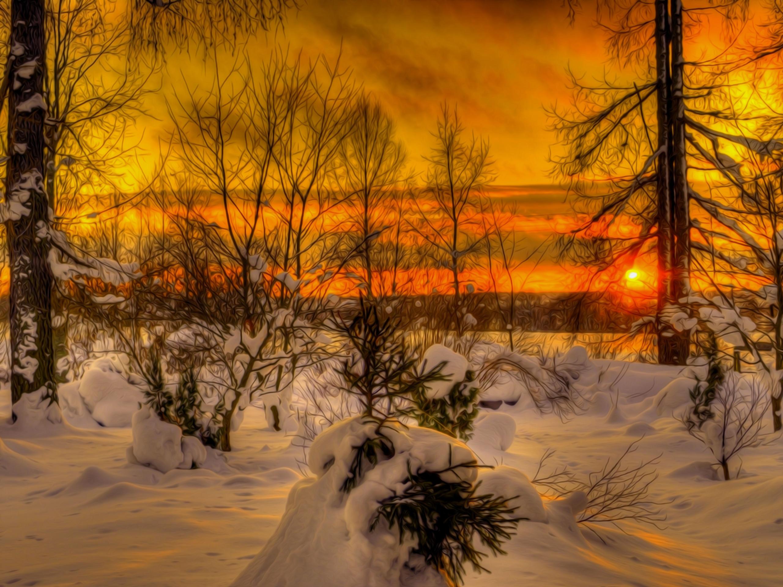 закат над снежной степью  № 831884  скачать
