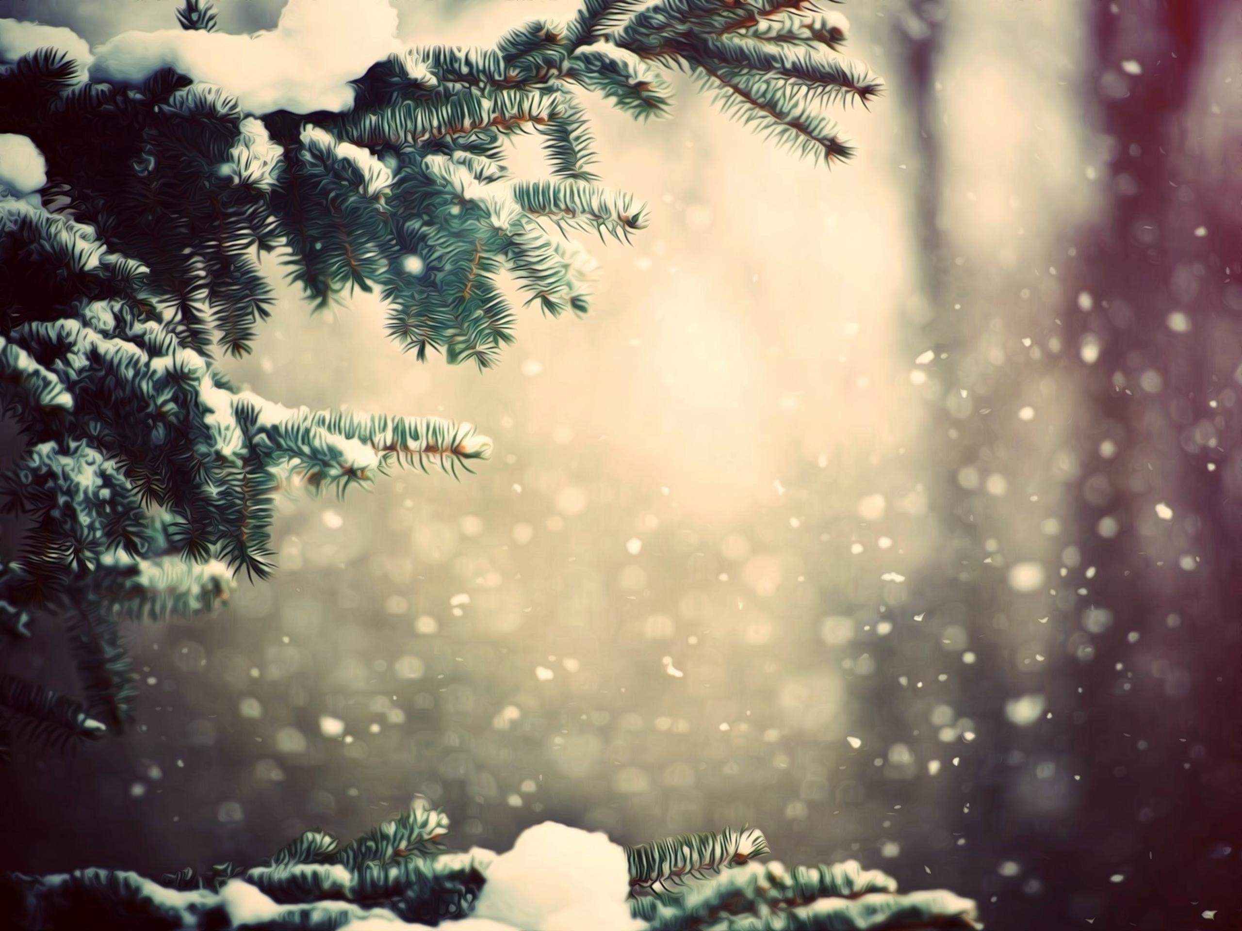 Трахнул зимой в горах 14 фотография