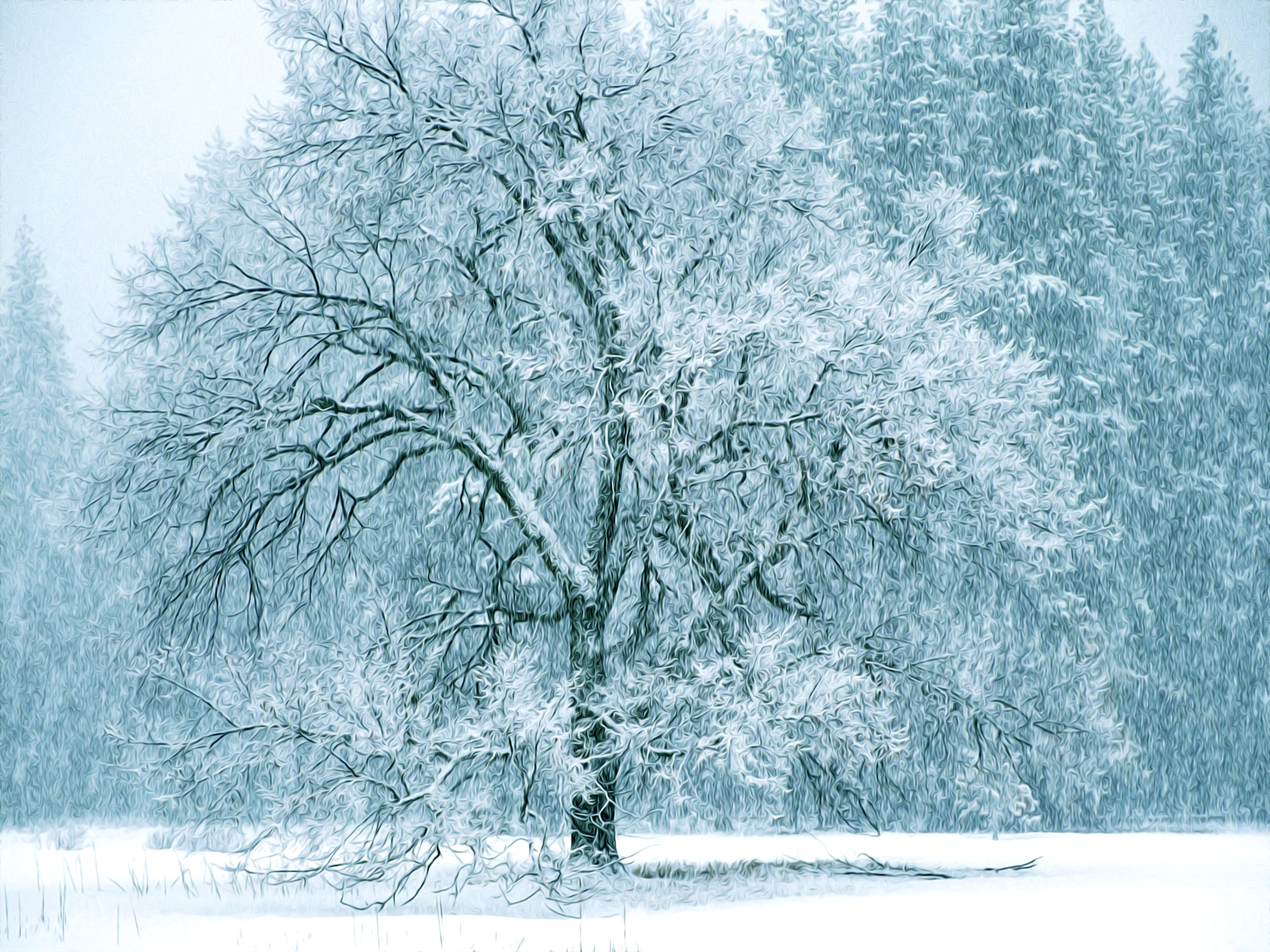 snow whiteside, mo - HD1920×1080