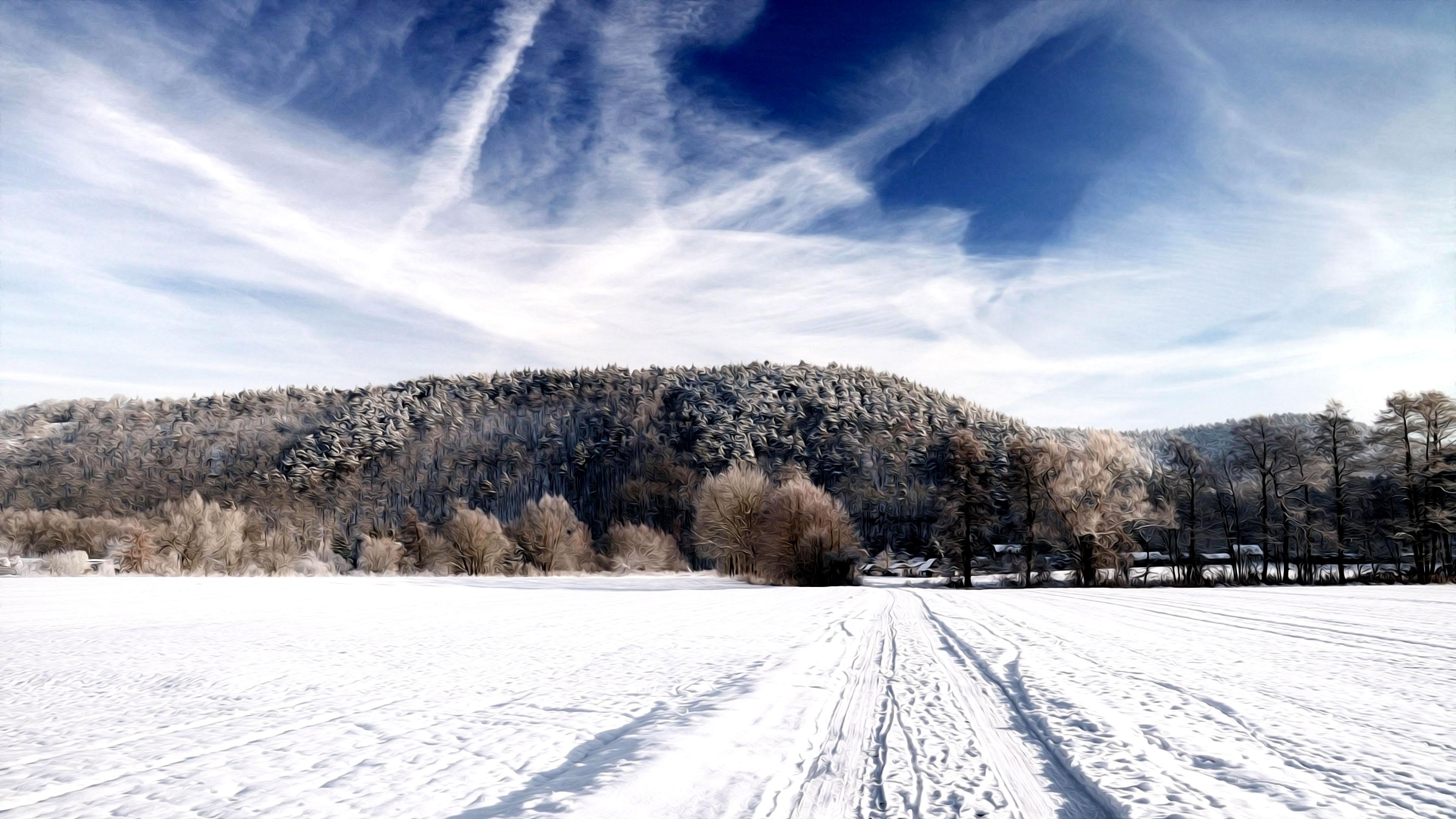 снег покров деревья небо анонимно