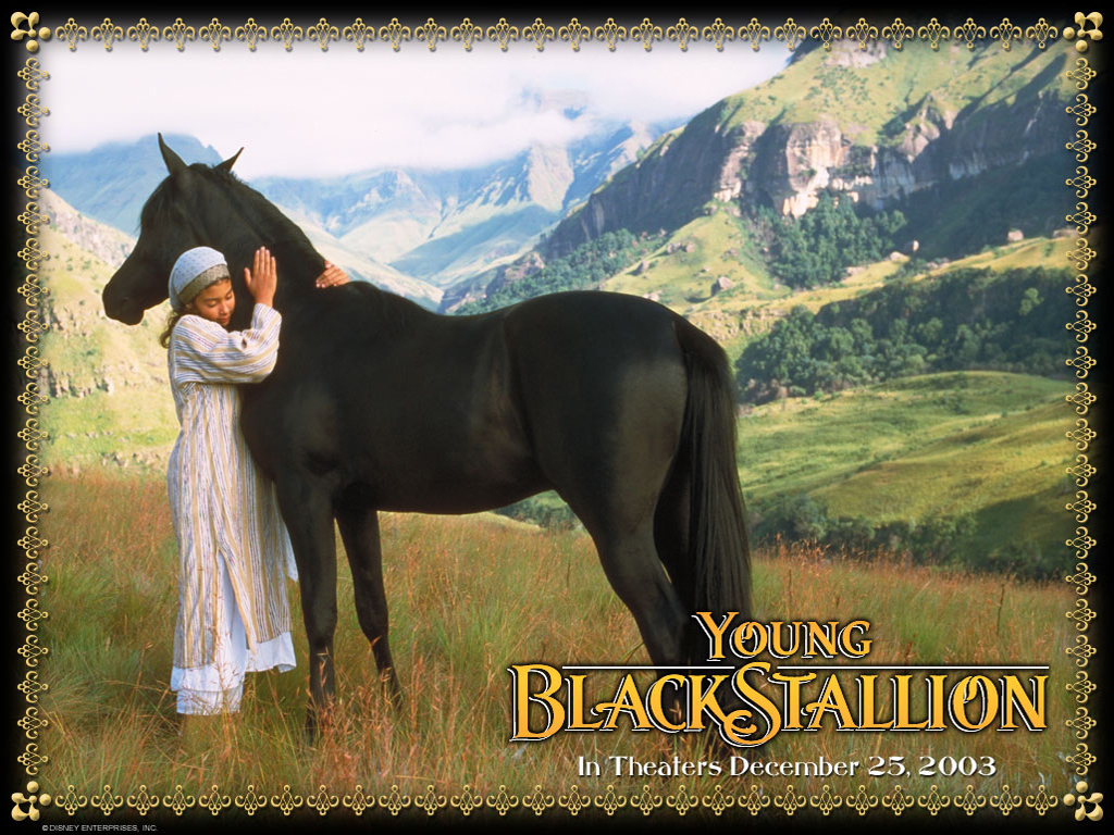 The Young Black Stallion 003