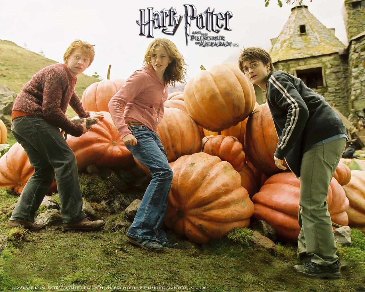harry potter fotografias:
