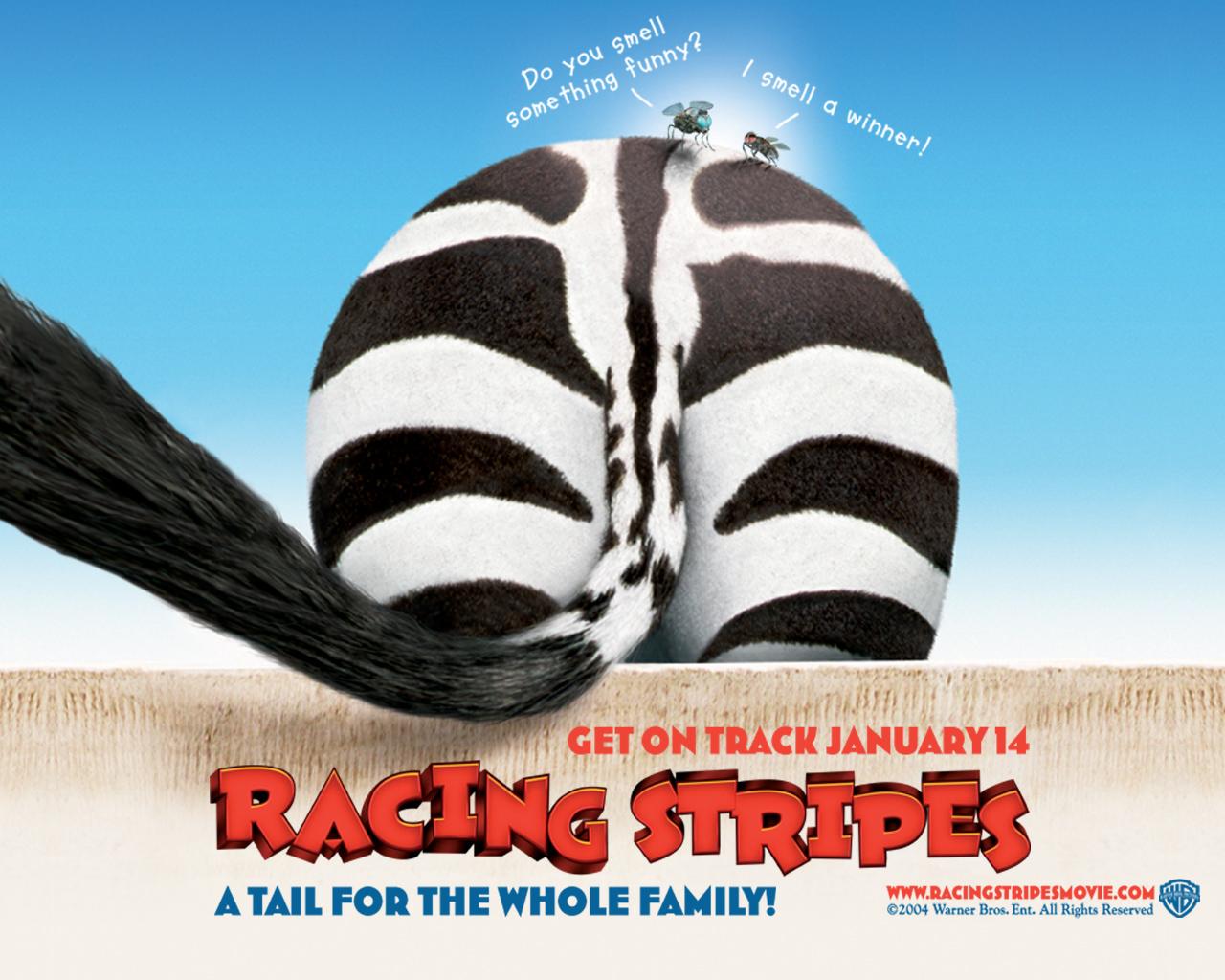 Racing Stripes 008